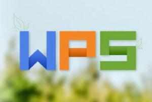 WPS专业版含SN下载